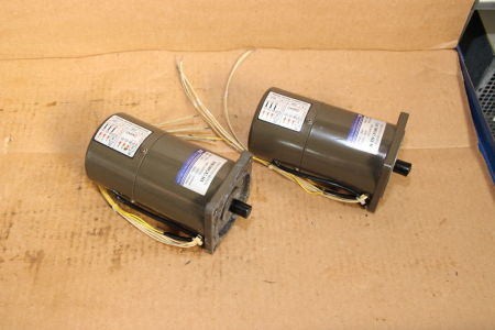 TUNG LEE 5RK90GU-S3M Induction motor i_02745290