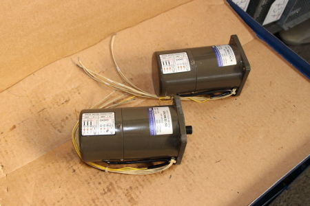 TUNG LEE 5RK90GU-S3M Induction motor i_02745291