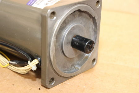 TUNG LEE 5RK90GU-S3M Induction motor i_02745294